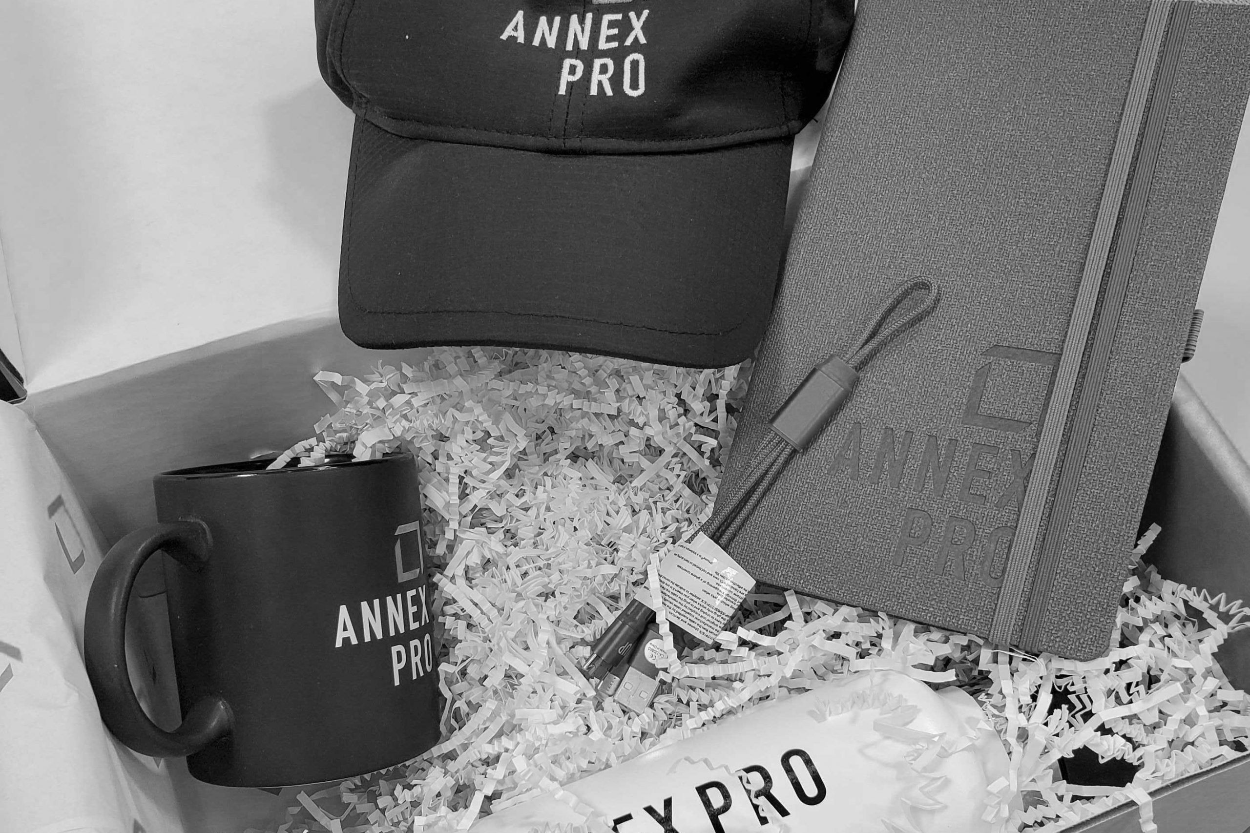 Photo of prize from Annex Pro included branded cap, notebook and water bottle
